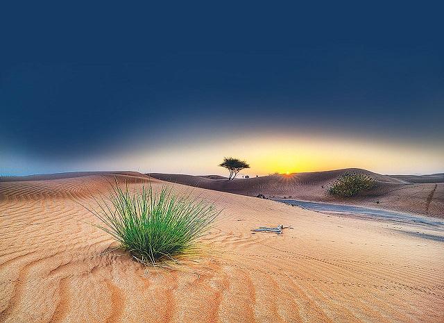 دانلود آهنگ عربی لو از الیسا  Elissa – Law Aolak