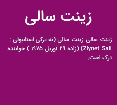 دانلود آهنگ Ziynet Sali به نام Hadi Hoppalara هادی هوپالارا