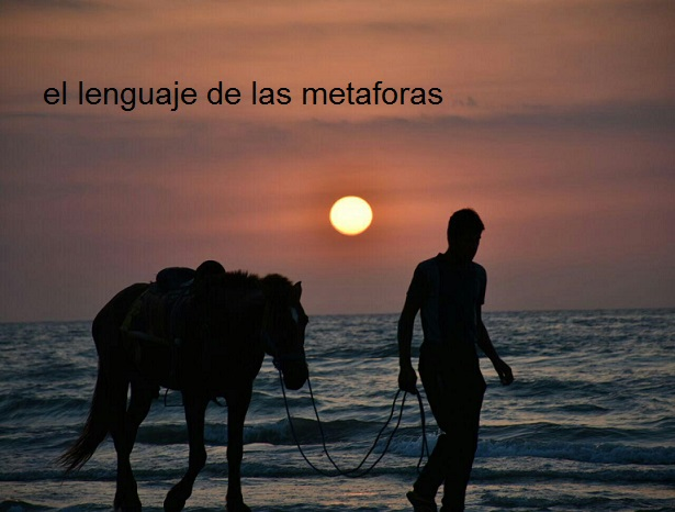دانلود آهنگ خارجی el lenguaje de las metaforas