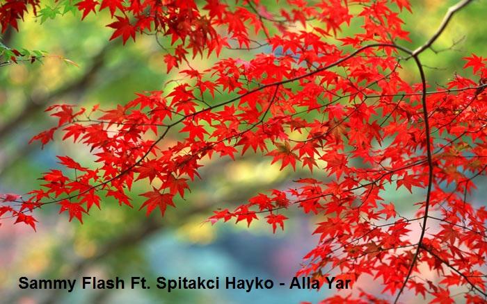 آهنگ ارمنی Sammy Flash Ft. Spitakci Hayko - Alla Yar