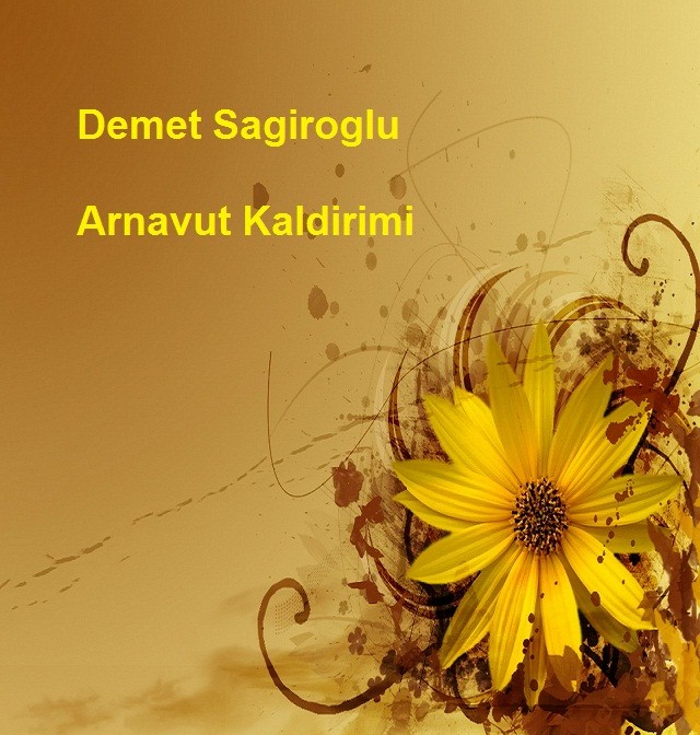 دانلود آهنگ Arnavut kaldirimi از Demet Sagiroglu