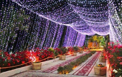 دانلود آهنگ ارکستری شیرازی واسونک با صدای سعید کریمی